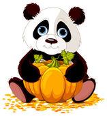 Panda holding pumpkin — Stock Vector