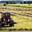 Stock Photo: Farmer on tractor is inverting hay