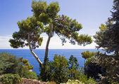 Belo parque à costa mediterrânica — Fotografia Stock