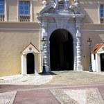 Princes Reinier's Palace of Monaco — Stock Photo #36369849