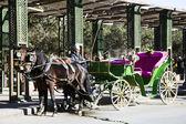 Vintage tourists carriage — Stock Photo
