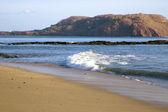 Beautiful wild beach ashore the Pacific ocean — Stock Photo