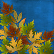 Autumn background with foliage and grunge papers design in scrap — Stock Photo