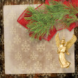 Angel christmas hanging on pine branch. — Stock Photo #14594015