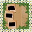 Abstract paper background with garland of snow-white daisies an — Stock Photo