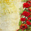 Card for congratulation or invitation with red roses — Stock Photo #15312785
