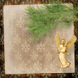 Angel christmas hanging on the pine branch. - Stock fotografie