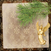 Angel christmas hanging on the pine branch. — Stock Photo