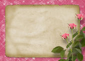 Card for congratulation or invitation with bunch of pink roseske — Stock Photo
