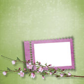 Beautiful abstract background with frame and branch of Sakura — Stock Photo
