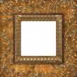 Wooden frame on the leafage — Stock Photo #2322361