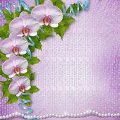 Grußkarte mit schönen zweig orchidee und perlen für eine heiraten — Stockfoto