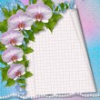 Greeting card with beautiful branch orchid and pearls for a wedd — Φωτογραφία Αρχείου
