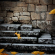 Stock Photo: Old stone staircase with fallen leaves in ominous moonlight