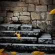 Stock Photo: Old stone staircase with fallen leaves in the ominous moonlight