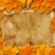 Bright fallen autumn leaves on the old paper background — Stock Photo #33201853