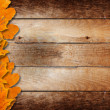 Bright fallen autumn leaves on a wooden background — Stock Photo