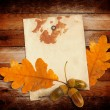 Old grunge paper with autumn oak leaves and acorns on the wooden — Stock Photo #33226447