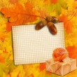 Old grunge paper with autumn oak leaves and Gift box on the wood — Stock Photo