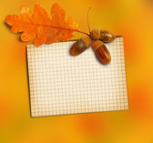 Old grunge paper with autumn oak leaves and acorns on the abstr — Stock Photo