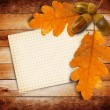 Old grunge paper with autumn oak leaves and acorns — Stock Photo #33899523