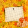 Autumn maple branch with gift box — Stock Photo #33899541