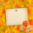 Autumn maple branch with gift box — Stock Photo