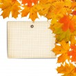 Old grunge paper with autumn maple branch leaves on the  white  — Stock Photo