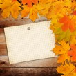 Old grunge paper with autumn maple branch leaves  — Stock Photo