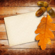 Old grunge paper with autumn oak leaves and acorns — Stock Photo