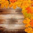 Bright autumn leaves on the old grunge wooden background — Stock Photo