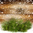 Snowy pine branch on the background of the old wooden walls — Stok fotoğraf