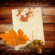 Old grunge paper with autumn oak leaves and acorns — Stock Photo #34590827