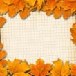 Stock Photo: Bright fallen autumn leaves on the old paper background