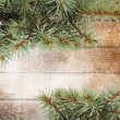 Christmas tree branch — Stock Photo #35470473