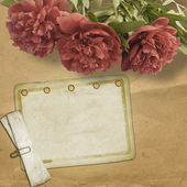 Vintage old postcard for congratulation with pink peonies — Stock Photo