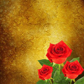Red rose with green leaves on abstract background — Stock Photo
