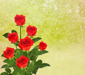 Red roses on the window with raindrop — Stock Photo