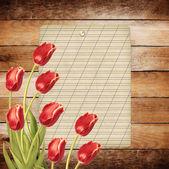 Strauß rote tulpen mit grünen blättern — Stockfoto