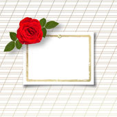 Rose with invitation card — Stock Photo