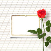 Red rose with the invitation — Stock Photo