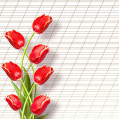 Bouquet of beautiful red tulips with greeting on paper white bac — Stock Photo