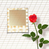 Bouquet of beautiful red roses with the invitation or congratula — Stok fotoğraf