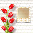 Bouquet of beautiful red tulips with slides on paper white backg — Stock Photo