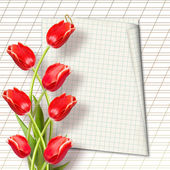 Bouquet of beautiful red tulips with greeting — Stock Photo
