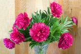 Krásnou kytici růžových pivoněk — Stock fotografie