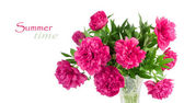 ピンクの牡丹の花束 — ストック写真