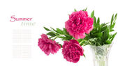 Beautiful bouquet of pink peonies on a white background isolated — Foto Stock