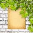 Old paper on white brick wall with green foliage — Stockfoto #49165347