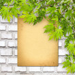Old paper on white brick wall with green foliage — Stok fotoğraf